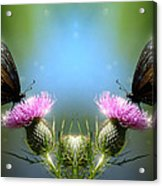 Magical Butterflies Acrylic Print