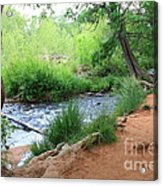 Magical Trees At Red Rock Crossing Acrylic Print
