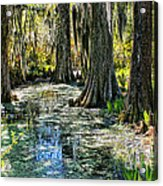 Magnolia Gardens Acrylic Print