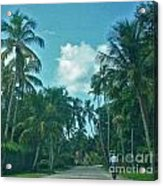 Mail Delivery In Paradise Acrylic Print