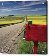 Mailbox On Country Road, Tiger Hills Acrylic Print