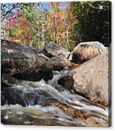 maine 29 Baxter State Park Trailside Stream Acrylic Print