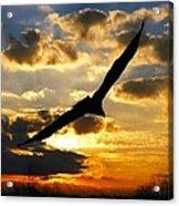 Majestic Sunrise Acrylic Print