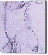 Male Nude 4281 Acrylic Print