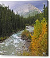 Maligne River Acrylic Print