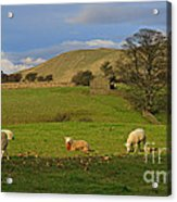 Mallerstang Dale In Cumbria Uk Acrylic Print