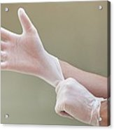 Man Putting On Latex Gloves Acrylic Print by