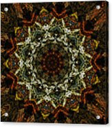 Mandala 111511 Acrylic Print