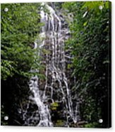 Mango Falls Acrylic Print by Randy Edwards