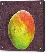 Mango On Plum Acrylic Print
