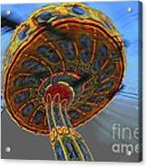 Manic Wheel Acrylic Print
