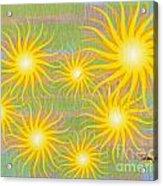 Many Suns Acrylic Print