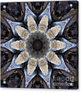 Marbled Mandala - Abstract Art Acrylic Print