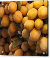 Market Mangoes Acrylic Print