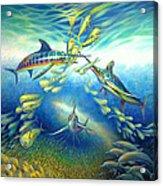 Marlin Frenzy Acrylic Print