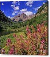 Maroon Bells - Fm000018 Acrylic Print