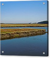 Marsh In Maine Acrylic Print