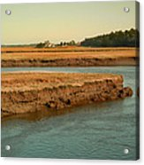Marsh Of Pine Point Acrylic Print
