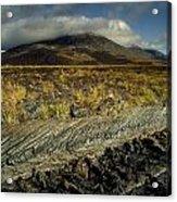 Marsh On The Landscape, Connemara Acrylic Print