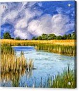 Marshlands On Isle Of Palms Acrylic Print