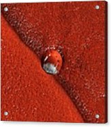 Martian Impact Crater, Satellite Image Acrylic Print