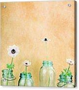 Mason Jars Acrylic Print by Stephanie Frey