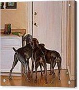 Master's Home Acrylic Print by Barbara Walker