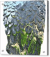 Matalic Angle Wings  Art Acrylic Print