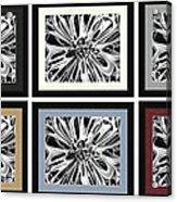 Matte Colors Acrylic Print