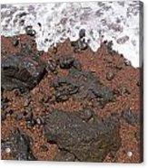 Mauis Red Shoreline Acrylic Print