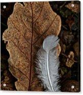 May To October Acrylic Print
