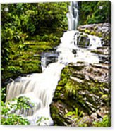 Mclean Falls In The Catlins Acrylic Print