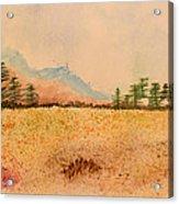Meadow Wildflowers - Watercolor Acrylic Print