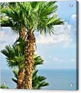 Mediterranean Landscape Acrylic Print