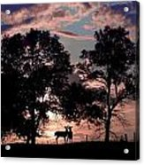 Meeting In The Sunset Acrylic Print
