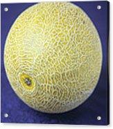 Melon Acrylic Print