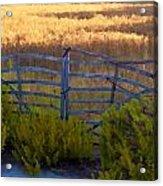 Menorcan Five Bar Gate Acrylic Print