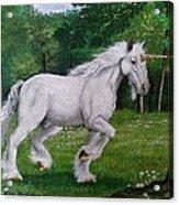 Merlin's Unicorn Acrylic Print