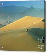 Mesquite Dunes Acrylic Print