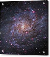 Messier 33, Spiral Galaxy In Triangulum Acrylic Print by Robert Gendler