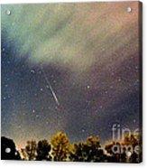 Meteor Perseid Meteor Shower Acrylic Print by Thomas R Fletcher