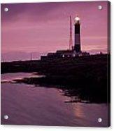 Mew Island, Belfast Lough, County Acrylic Print