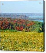 Michigan Winery Views Acrylic Print