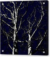 Midnight Blue Acrylic Print