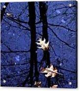 Midnight Stillness Acrylic Print