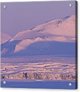 Midnight Sunlight On Polar Mountains Acrylic Print