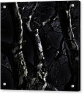 Midnight Tree 3 Acrylic Print