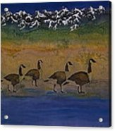 Migration Series Geese 2 Acrylic Print