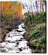 Mile Long Rapids Acrylic Print