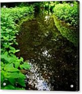 Mill Pond Stream In Green Acrylic Print